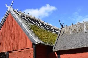 Vi fikade och gick runt bland husen på Ölands museum