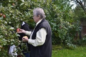 Damerna pallar äpplen i en trädgård vi passerade (Aina kännde ägarna)