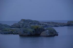 Hönö 2009-12 008