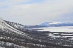 Utsikt söderut över björkskog och fjällsida under en promenad uppåt fjället