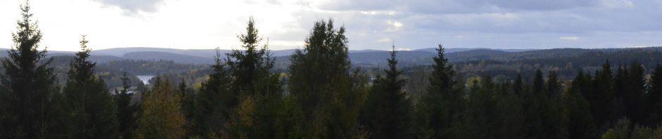Som alltid stannade vi till någon mil norr oom högakustenbron för att beundra utsikten