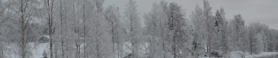 sangisälven rinner genom Kukasjärvi ,sjön var för länge sedan språkgräns mellan Sverige och Finland. Byn som ligger vackert vid sjön hade fortfarande på 60talet skola och en liten affär (Gretas). Nu är skolan sedan länge nedlagd och Greta död sedan många år. De flesta ungdommar sökte sig bort och och dagen ungar i byn är antagligen lätt räknade